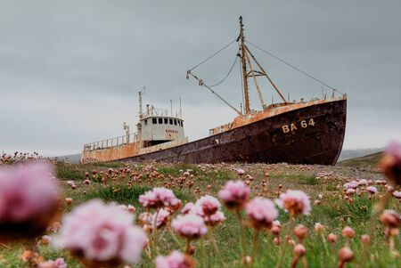 Abandoned fishing boat on the shore of fjord in western Iceland