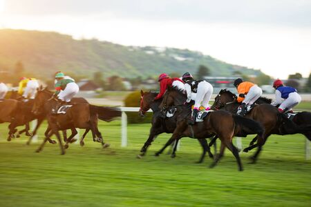 Race horses with jockeys on the home straight Zdjęcie Seryjne