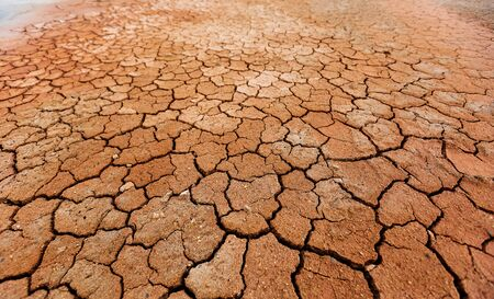 Brown dry cracked ground texture