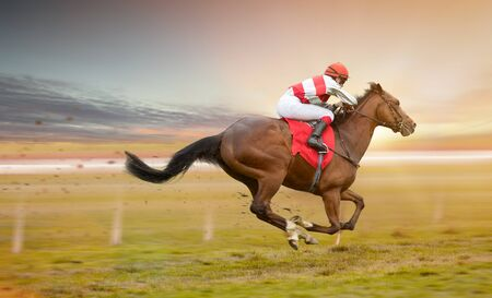 Race horse with jockeys on the home straight. Shaving effect. Standard-Bild - 145914072