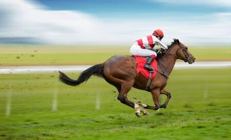 Race horse with jockeys on the home straight