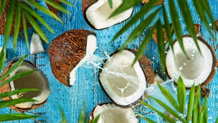 Freeze Motion of Water Splashing on Coconut