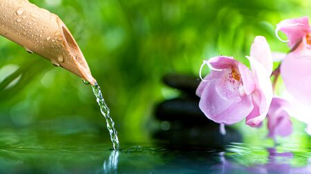 Leaking water stream from bamboo, spa and wellness concept.