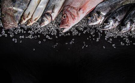 Fresh tasty seafood served on black stone table.