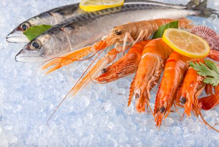 Fresh tasty seafood served on crushed ice Zdjęcie Seryjne