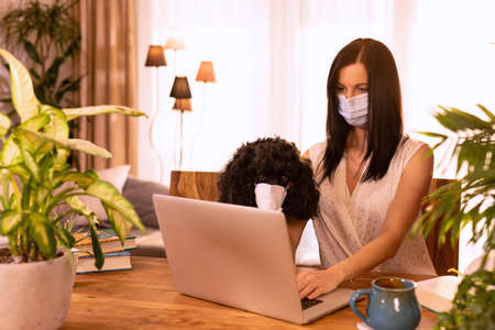Young female working on her laptop computer with her poodle dog