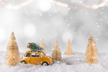 Christmas decoration with little car and tree on the roof.