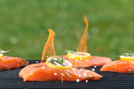Assorted delicious grilled salmon fillets