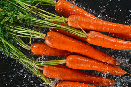 Falling fresh harvested carrots, water splash during impact