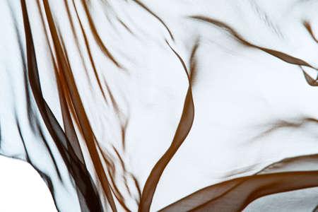 Smooth elegant transparent cloth Zdjęcie Seryjne