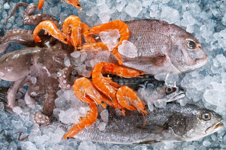 Close Up of Fresh Sea Fishes and Shrimps Lying on Crushed Ice. Standard-Bild
