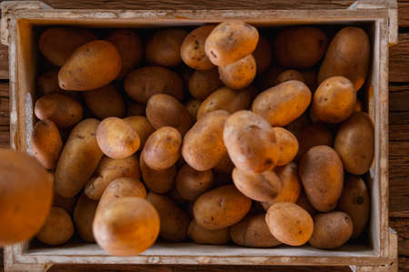 Fresh harvested potatoes falling down into a wooden box.