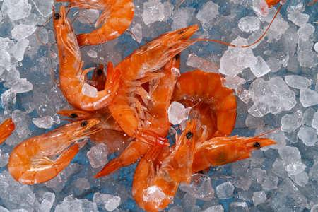 Close Up of Fresh Shrimps Lying on Crushed Ice.
