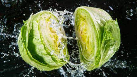 Falling fresh harvested lettuce, water splash during impact