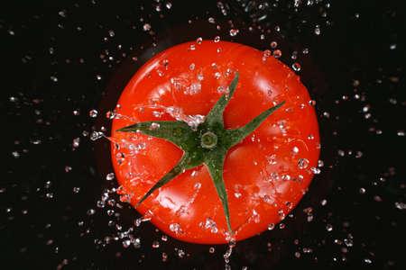 Falling fresh harvested tomato, water splash during impact, top view