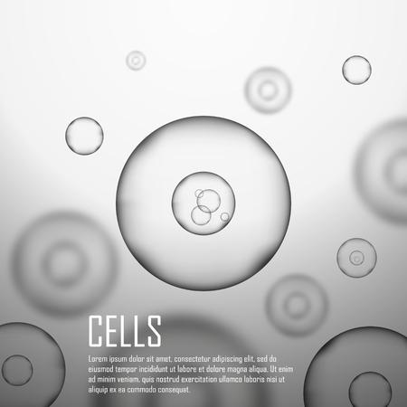 vector  molecular: Grey cell background. Life and biology, medicine scientific, molecular research dna. Grey cell in focus. Vector illustration Illustration