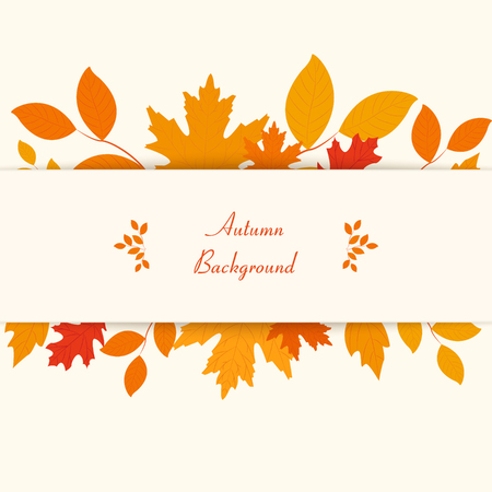 on a white background: Autumn background. Vector eps10. Can be used for flyers, banners or posters.