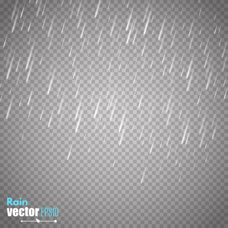 Vector rain isolated on transparent background.