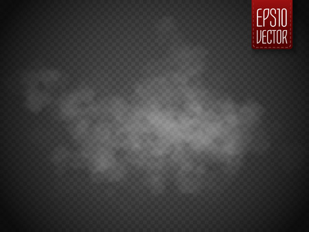 Fog or smoke isolated transparent special effect. White vector cloudiness, mist or smog background. Magic template. Vector illustration Vettoriali