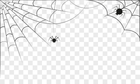 spidery: Background with two spider webs isolated. Halloween concept. Vector illustration