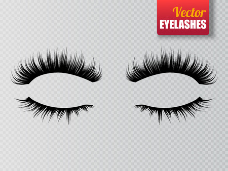 Lashes isolated on transparent background. False eyelashes set. Vector illustration.