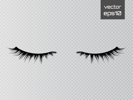 Lashes isolated on transparent background. False eyelashes set. Vector Çizim