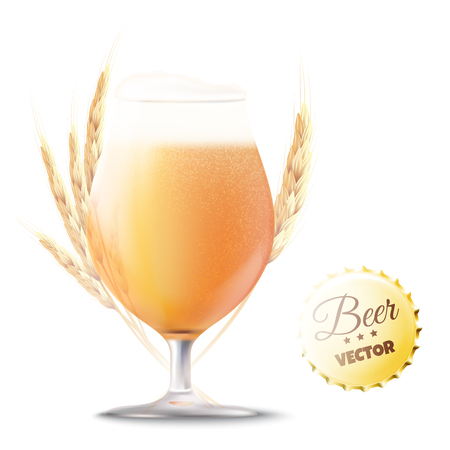 Beer illustration. Glass of beer with wheat ears isolated. Vector eps10 Illustration