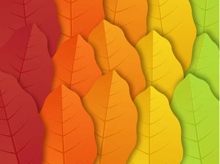 Pattern with autumn leaves. Autumn leaf isolated on transparent background. Yellow autumnal garden leaf, red fall leaf and fallen dry leaves.