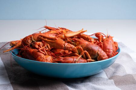 Boiled red river crayfish in a blue plate on the table