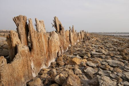 The remains of an old pier. Aged logs stick out of sand at the bottom of a dried reservoir Standard-Bild