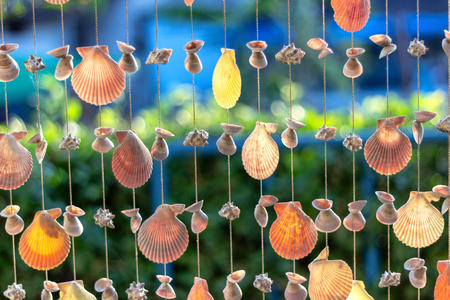 The seashell is a colorful curtain for ornamentation on the outside of the room or on the wall, making it a beautiful place to relax by the sea with holiday travel. Stock Photo