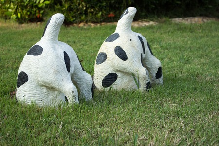 Two Cows bottom doll on the grass for gardening
