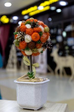 topiary: mandarin topiary