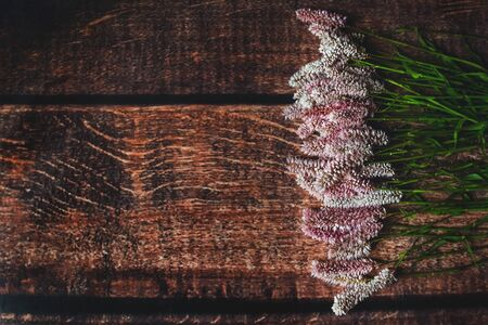 Lilac flowers on dark wooden background, Flatley, summer, eco