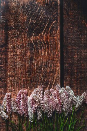 Lilac flowers on dark wooden background, Flatley, summer, eco, shot from above 版權商用圖片 - 131872015