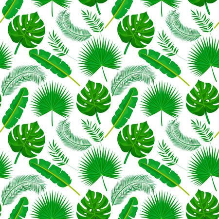 Palm leaves seamless pattern. Green tropical plants texture on white background. Nature organic background. Vector illustration Banque d'images - 121354496