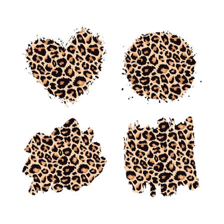 Leopard print textured hand drawn brush strokes set. Abstract grunge paint spots with wild animal cheetah skin pattern texture. Vector design elements for fashion print design, tag, card, backgrounds. 矢量图像