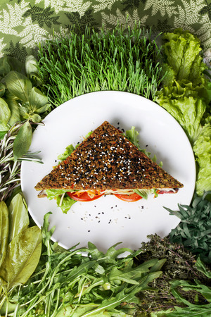 raw food sandwich with carrot greens and herbs photo