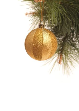 pine branch: New Years gold sphere on a pine branch