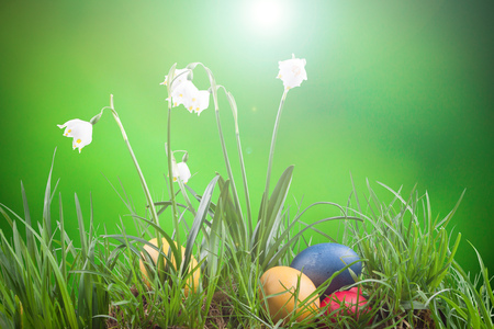 spring snowflake in the grass and Easter eggs
