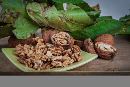 albero nocciolo: walnuts (Juglans regia) on a light background with leaves from the stoma