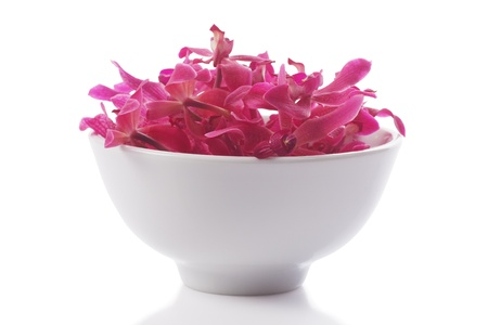 red orchid in  bowl isolated white Stock Photo
