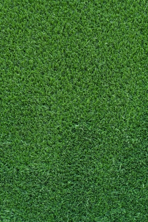 greengrass: artificial turf background on floor