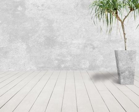 Weiß-Grunge Betonwand und Holzboden mit weißen Baum im Zementtopf.