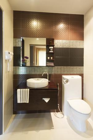 luxury modern style decorated toilet.