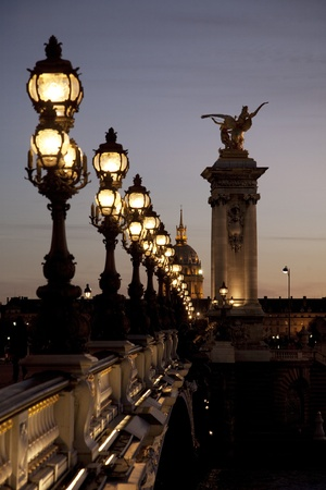 Pont Alexandre III Bridge illuminated at night in Paris, France