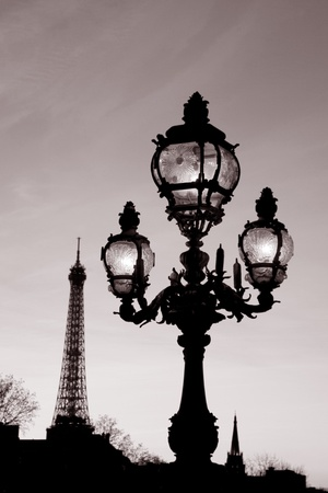 Pont Alexandre III Bridge illuminated at night and the Eiffel Tower in Paris, France photo