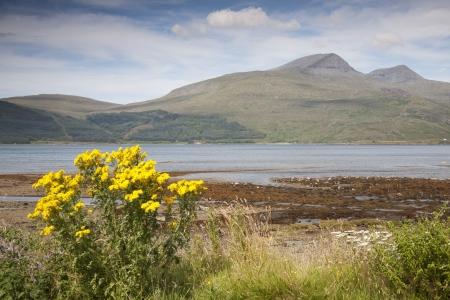 Mull: Landscape; Isle of Mull; Scotland, UK