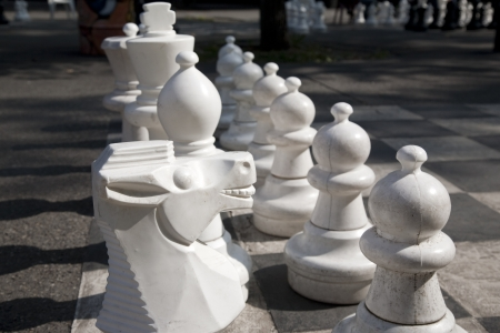 passtime: Chess Pieces on Board in Park