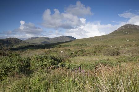 connemara: Connemara National Park, County Galway, Ireland